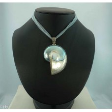 Shell & Silk necklace (Seagreen)